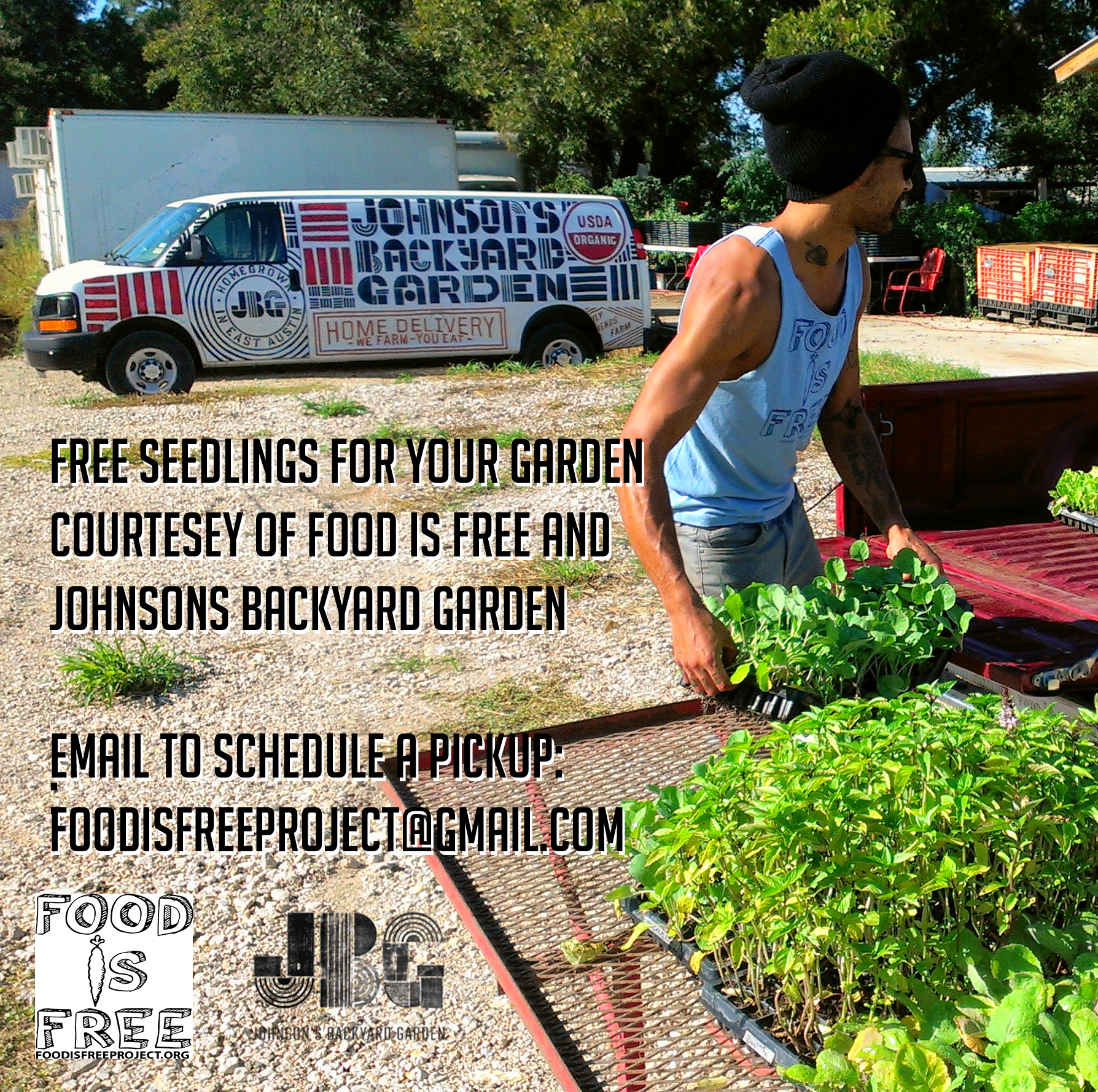 free seedlings from johnsons backyard garden food is