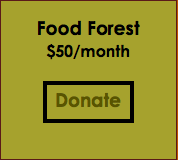 Monthly Sponsor - Food Forest Level